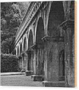 Nanzenin Temple Aqueduct Wood Print