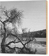 Napa Lake Wood Print by Francesco Emanuele Carucci