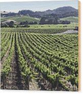 Napa Valley Vineyard Wood Print by Dee  Savage