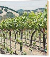 Napa Vineyard Grapes Wood Print