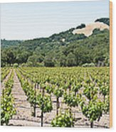 Napa Vineyard With Hills Wood Print by Shane Kelly