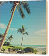 Naple Beach Palms Wood Print