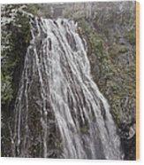 Narada Falls Mt Rainier Wood Print