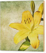 Narcissus Wood Print