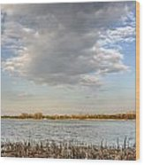 Narew River Near Serock In The Vicinity Of Warsaw Wood Print