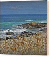 Narragansett Rocky Shore Wood Print