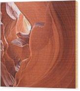 Narrow Canyon Xi Wood Print