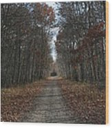 Narrow Path On Recovery Road Wood Print