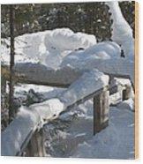 Narrow Trail Wood Print