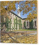 Nassau Hall With Fall Foliage Wood Print by George Oze