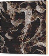 Nasute Termite Nest Amazonian Peru Wood Print