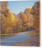 Natchez Trace Wood Print by Brian Jannsen