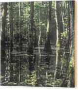 Natchez Trace Cypress Wood Print