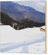 Nathatop- Jammu And Kashmir- Viator's Agonism Wood Print