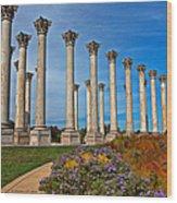 National Capitol Columns Wood Print