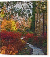 National Cathedral Path Wood Print