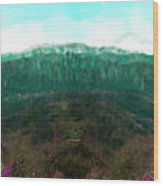 National Forest Wood Print