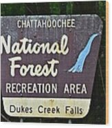 National Forest Recreation Area Wood Print