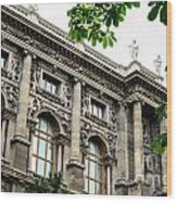 National Library In Vienna Austria Wood Print