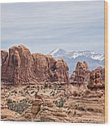 National Park Treasure Wood Print