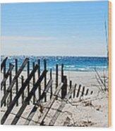 National Seashore Wood Print