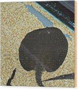 National Zoo - Fish - 011315 Wood Print