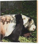 National Zoo - Panda - 011328 Wood Print