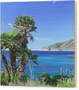 Native Fan Palms In Sant Elm Wood Print