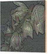 Native Plant 1 Wood Print