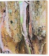 Natural Abstract Crepe Mertle Wood Print