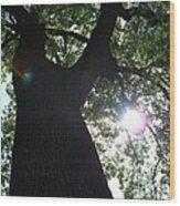 Natural Beam Wood Print