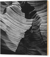 Natural Beauty Of Antelope - Black And White Wood Print