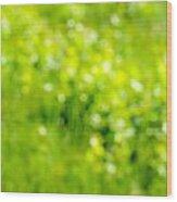 Natural Bokeh Wood Print