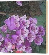 Natural Bouquet Bunch Of Spiritul Purple Flowers Wood Print