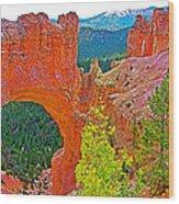 Natural Bridge In Bryce Canyon National Park-utah  Wood Print