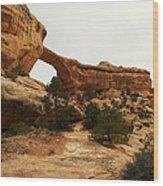 Natural Bridge Southern Utah Wood Print