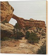 Natural Bridge Southern Utah Wood Print by Jeff Swan