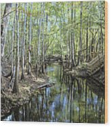 Natural Bridge Springs Wood Print