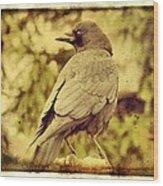 Natural Crow Wood Print