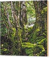 Natural Emeralds. I Wicklow. Ireland Wood Print