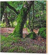 Natural Emeralds II. Wicklow. Ireland Wood Print