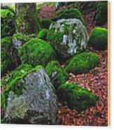 Natural Emeralds. Wicklow. Ireland Wood Print