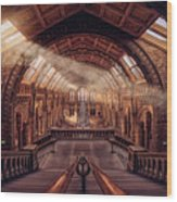 Natural History Museum - London Wood Print