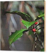 Natural Holly Decor Wood Print