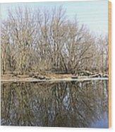 Natural Mirror Wood Print