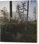 Natural Network Wood Print