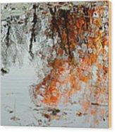 Natural Paint Daubs Wood Print