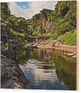 Natural Pool - The Beautiful Scene Of The Seven Sacred Pools Of Maui. Wood Print