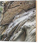 Natural Rock Art 2 Wood Print