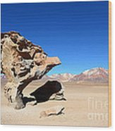 Natural Rock Sculpture Wood Print